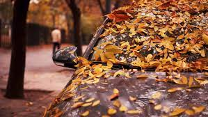 protect your car in this fall season